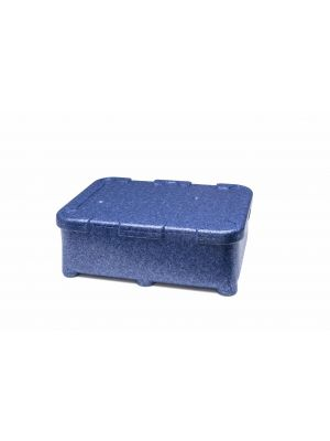 Isothermal container Polibox Monoking blue