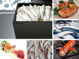 Good fish at the table starts from a good cold chain